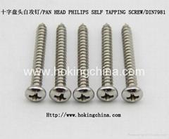 不锈钢自攻螺丝(DIN7981)
