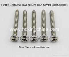 Stainless Steel Self Tapping Screw(DIN7981)