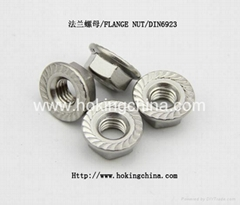 SGS Apprvoed stainless steel flange nut(HSS-007)
