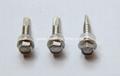 不鏽鋼鑽尾螺絲/DIN7504P 2