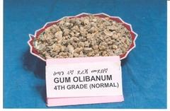 GUM OLIBANUM 4TH GARDE NORMAL