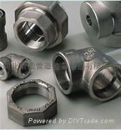 不锈钢锻制管件 1