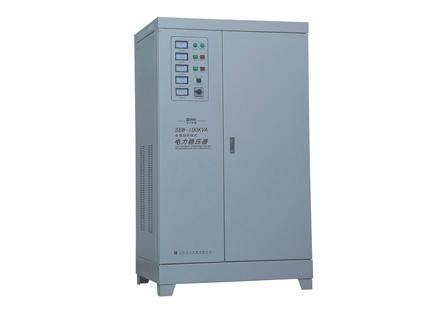 DJW high precision automatic AC voltage stabilizer SVC0.5KVA 1