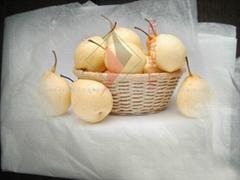 供應包雪梨蔬菜用拷貝紙