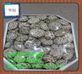 供應高透明POF環保熱收縮膜 5
