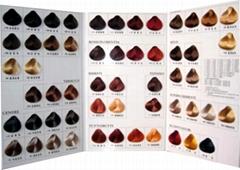 Salon hair color palette color card