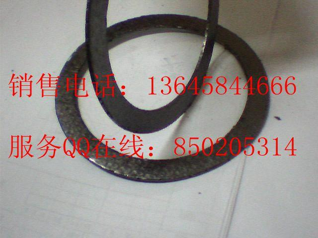 Double tanged SS304 reinforced graphite gasket 6
