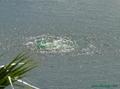 別墅景觀水湖水處理設備