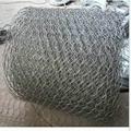 Best price chicken wire mesh