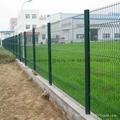 Best price steel garden fence