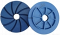 Edge polishing wheels , levigacosta 11