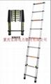 重庆关节梯 4