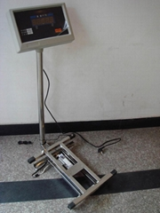 Electronic Platform Scale for  Feather
