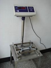 Electronic Platform
