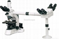 BestScope BS-2030MH Series Multi-Head Microscope with Nice Quality
