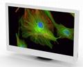 Bestscope BLC-600 HD LCD Digital Microscope Camera