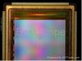 Bestscope Buc5c-1600c USB3.0 Digital Camera 6