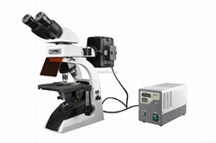 Nice quality BestScope BS-2072FB Fluorescent Biological Microscope