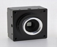 Gauss2 Series Industrial Digital Cameras