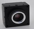 USB3.0 Gauss3  3MP area scan Cameras for machine vision U3C320C(MRYNO)