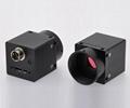 high resolution Jelly 3 USB3.0  industrial digital Cameras 12MP MU3S1200M/C