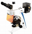 Fluorescence biological microscope