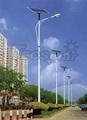 solar street light (40w)