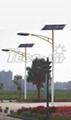 solar street lamp (50w)