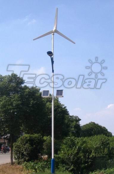 80W Wind-solar hybrid solar LED street light 1