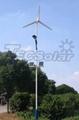 80W Wind-solar hybrid solar LED street