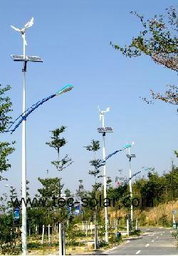 80W Wind-solar street light 1