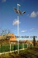 Wind-solar hybrid LED street light