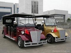 株洲電動遊覽車