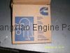Cummins Piston Ring LT10 3803961