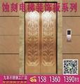 不鏽鋼電梯板,電梯蝕刻裝飾板,花紋板,蝕刻板 1