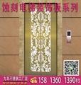 不鏽鋼電梯板,電梯蝕刻裝飾板,花紋板,蝕刻板 2