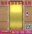 不鏽鋼電梯板,電梯蝕刻裝飾板,花紋板,蝕刻板 3