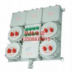 BXMD系列防爆照明動力配電箱
