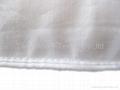 silk pillow 3