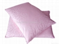 美容养颜蚕丝枕