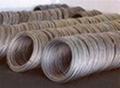 304不鏽鋼螺絲線