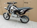 49cc mini dirt bike FLD-DB49 2