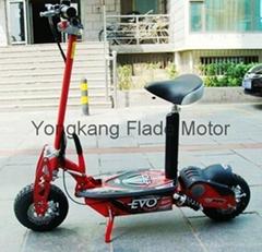 800w EVO 滑板車