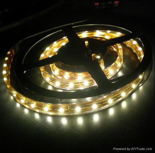 LED软灯条 2