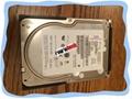 "IBM SCSI Hot swap 3.5"" HDD 40K1023"