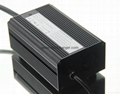 LiFePO4 Battery Charger 48V 1