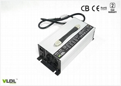 36V30A Li Battery Charger (Hot Product - 1*)