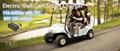 E-golfcart battery charger