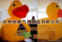Inflatable duck  cartoon