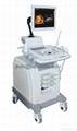 4D color doppler Ultrasound System